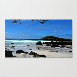 The Galapagos Canvas Print