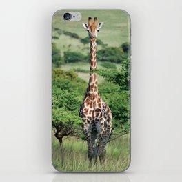 Giraffe Standing tall iPhone Skin