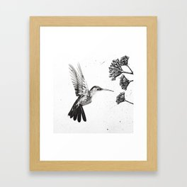 Humming Bird & Flower Framed Art Print