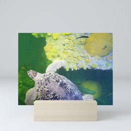 Sea Turtle on Lime Green Mini Art Print