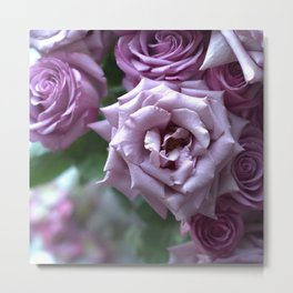 A Rose is a Rose is a Rose... Metal Print