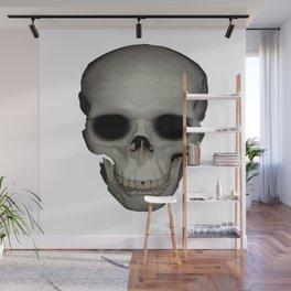 Human Skull Vector Isolated Wall Mural