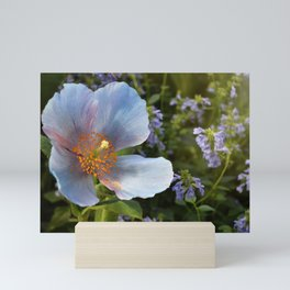 Blue Poppy Mini Art Print