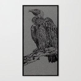 Vulture (DirtyDecibels) Canvas Print