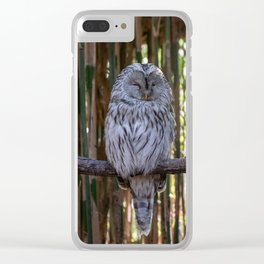 Ural owl resting on a branch Clear iPhone Case