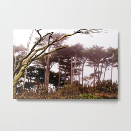 Enchanted by the Bay Metal Print