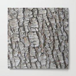 TEXTURES -- Spruce Bark Metal Print