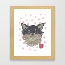 CHIHUAHUA, Long Haired Chihuahua, Dog Framed Art Print