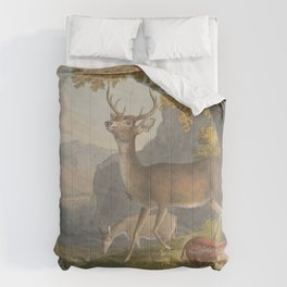 Vintage Illustration of a White Tail Deer (1830) Comforters