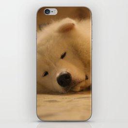 padpad iPhone Skin