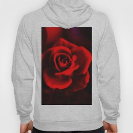 Red rose on red Hoody