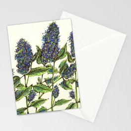 Agastache Stationery Cards