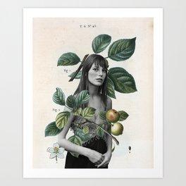 Jane 3 Art Print