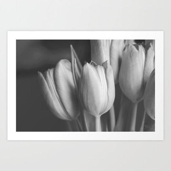 Softness Mono Art Print
