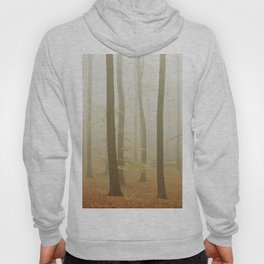 Foggy Woods III Hoody