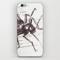 Black Beetle iPhone & iPod Skin