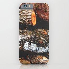 Wood Heap iPhone Case
