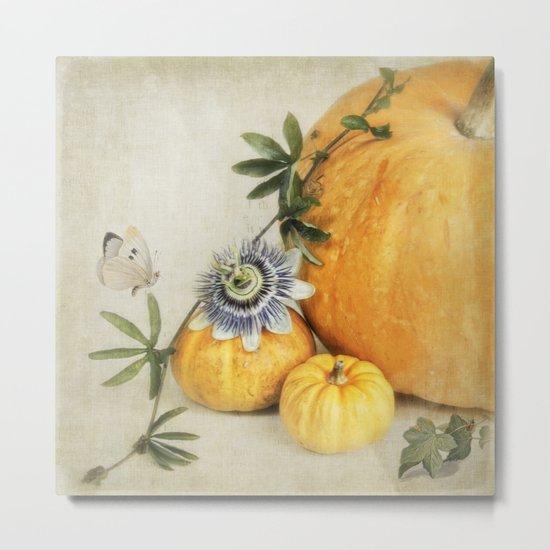 pumpkin & passiflora Metal Print