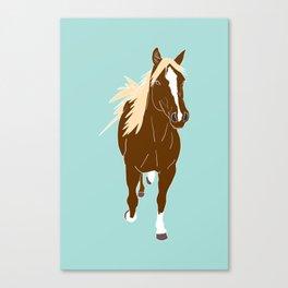 Quarter Horse Equestrian Illustrated Print Canvas Print