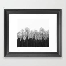 Trees in rows Framed Art Print