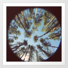 look up & GET LOST Art Print