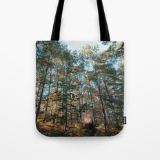 into the woods 10 Tote Bag