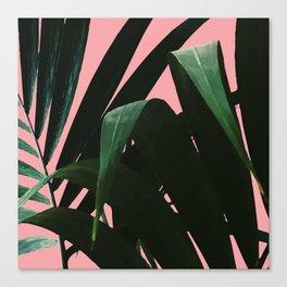 Tropikal Inspo Canvas Print