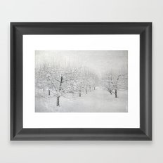 Winter Apple Orchard Framed Art Print