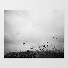 The Beautiful Flight ~ BW version Canvas Print