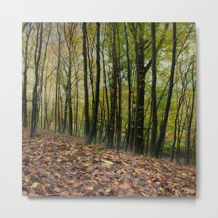 Autumn Textures Metal Print