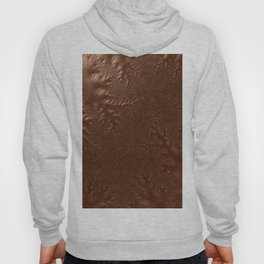 Burnished  Copper Hoody
