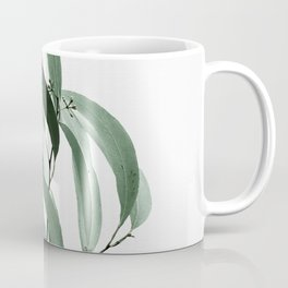 Eucalyptus - Australian gum tree Coffee Mug