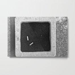Ash Metal Print