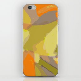 Horizon Transformation #2 iPhone Skin
