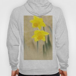 Two yellow narcissus flowers Hoody