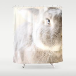 The Prince of Gray & White Shower Curtain