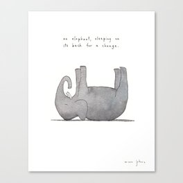 an elephant, sleeping on its back for a change Canvas Print