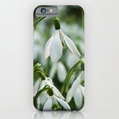 Snowdrops Slim Case iPhone 6s