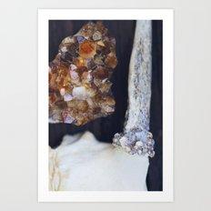 Citrine and Bone Art Print
