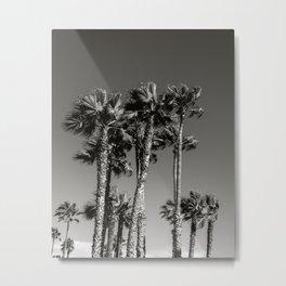 Venice Beach Black & White Palm Trees Metal Print
