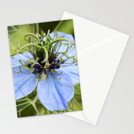 Love in a mist Stationery Cards