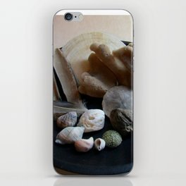 Beach Curiosity Collection Display iPhone Skin