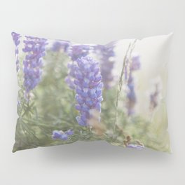Lupine Morning - Flower Photography Pillow Sham