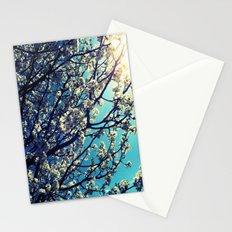 Pops Stationery Cards