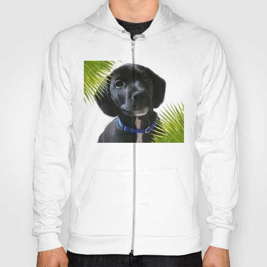 Puppy Chico Hoody