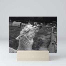 Llama joy Mini Art Print