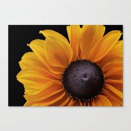 Rudbeckia Flower Canvas Print