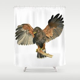 Hawk Flapping Wings Watercolor Painting Shower Curtain