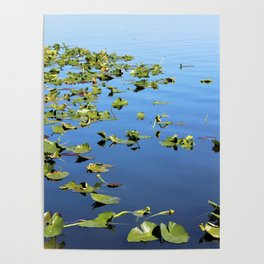 On the Lake Poster