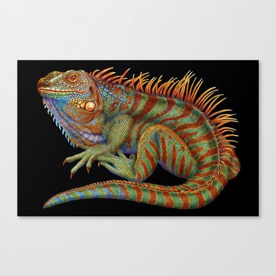 Iguana 2 Canvas Print